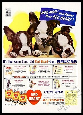 1942 Boston Terrier puppy dogs photo Red Heart Dog Food vintage print ad