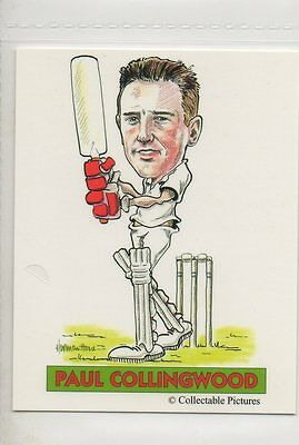 #13 Paul Collingwood  Cricket Collector Card