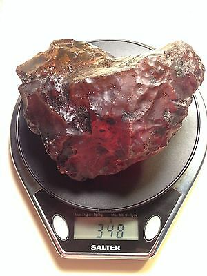 A101 2 Large Fossiliferous Amber 348g 120g authentic Dominican Amber Gemstones