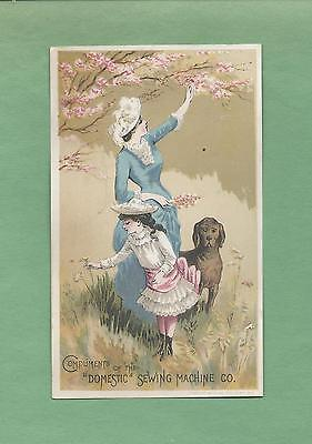 MOTHER, DAUGHTER AND DOG On DOMESTIC SEWING MACHINES Victotrian Trade Card