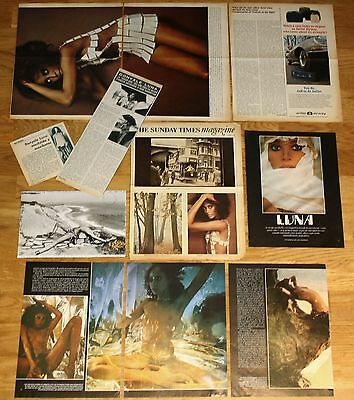 DONYALE LUNA 1960s/1970s clippings magazine articles nude photos ebony model
