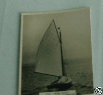#16 iron duke in wellington harbour nz- Sport cig card