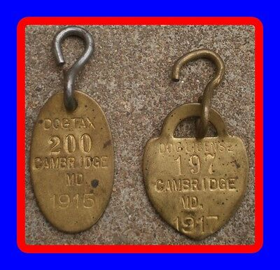 Early Old Antique Cambridge Maryland Md 1915 & 1917 Dog Brass Tag Tax License