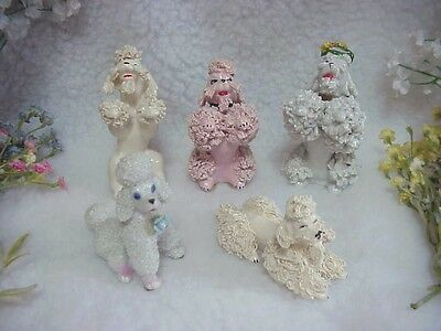 LOT OF 5 Spaghetti Poodles ~Nice Assortment Of Smaller Poodles
