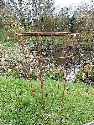 Garden Plant support handmade antique style rusty metal decorative plant support