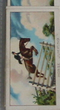 #18 horse jumping - Sport cigarette card