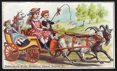 DOMESTIC SEWING MACHINE Trade Card 1880's GOAT CART Children Dog & DOLL