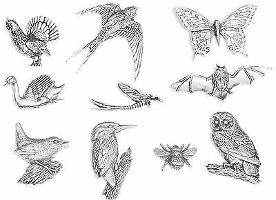 British Birds Theme Fridge Magnets Multi Choice Insects, Swan, Swallow, Bee, Owl