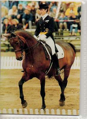 #220 tinne wilhelmson SWE - d equestrian collector card