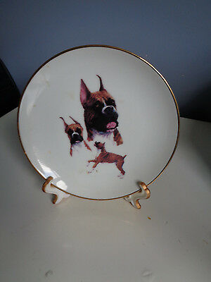 Boxer Dog Collectors Plate