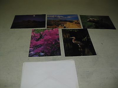 Collectible Lot Of 5 National Park Conservation   Mixed Lot Of Greeting Cards