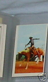 #25 Rough Riding / Rodeo  - Collector Sports card