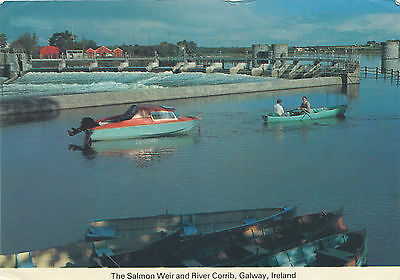 The Salmon Weir and River Corrib, Galway Ireland 1980 Postcard (J11