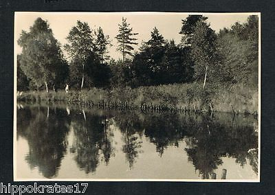 FOTO PHOTO, Spiegelung, Wald See forest relection lac lake reflexion foret /103