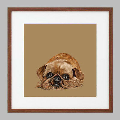 Limited Edition Print - Brussels Griffon