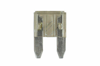 GENUINE 2amp Mini Blade Fuse Pk 5 | Connect 36831