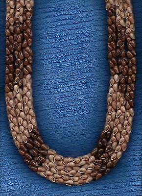 "Hawaiian 100% Niihau Shell 44"" 3-Strand Collector's Poleho Shell Lei"
