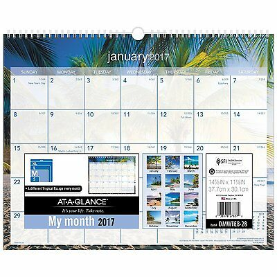 """AT-A-GLANCE Wall Calendar 2017, Monthly, 14-7/8 x 11-7/8"""", Tropical Escape"""