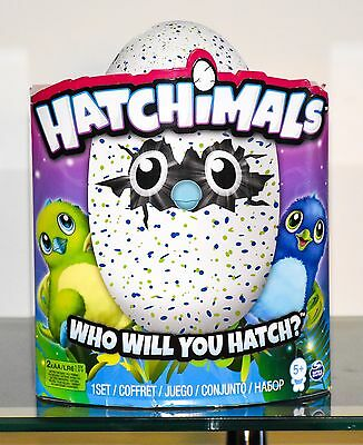 Sale Hatchimals Rare (Green & Blue Draggles) Hatching Egg 3 Day Sale