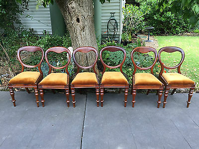 Set of 6 Antique Victorian Cedar Balloon Back Dining Chairs!