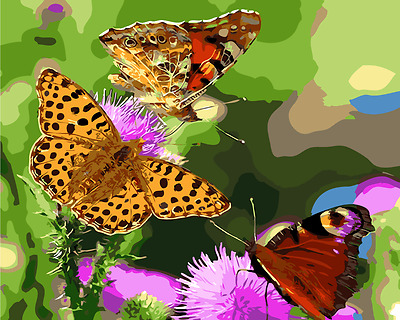 Painting by Number kit The Butterflies In The Flowers Insect Animals DIY MB7048