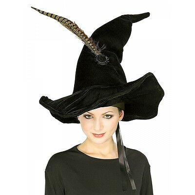Professor McGonagall's Hat & Feather Adult Harry Potter Witch Halloween Costume