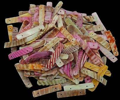 Double drilled cut Pectin Sea Shell Bead Sticks assorted colored lot of 20   <><