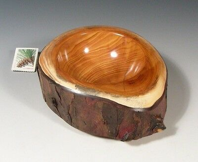 JUNIPER (12847) G+ Hand Turned Wood Bowl SMITHSONIAN Walsh