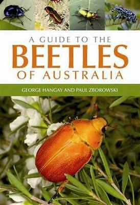NEW A Guide to the Beetles of Australia By George Hangay Paperback Free Shipping