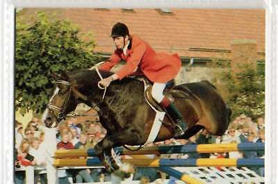#81Peter Eriksson SWE Jumping equestrian collector card