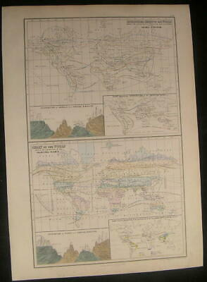 World Botanical Zoological Ornithological 1853 antique engraved hand color map