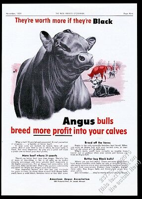 1959 black angus catte bull ranch art American Angus Assn vintage print ad