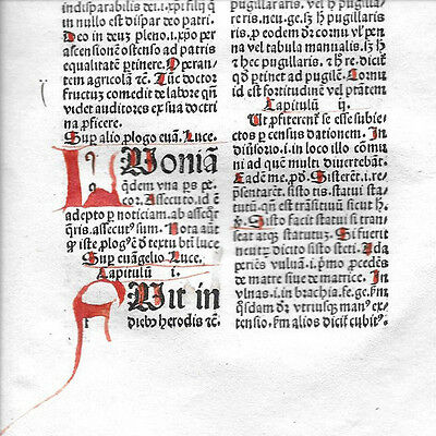 1 Leaf 1494 Incunabula Medieval Latin MAMMOTRECTUS  & 3 Red Handwritten Letters