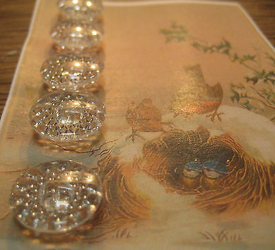 "Set of 6 ~  Vintage 3/4"" Sparkling Crystal Glass Buttons~PreWWII"