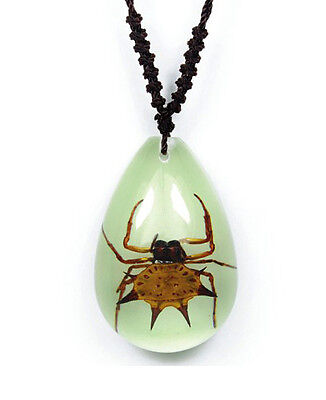 Small Glow In The Dark Lucite Teardrop Necklace w/ REAL Spiny Spider YD0705