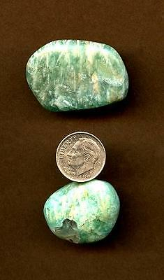 Amazonite Tumbled Stone Lot #4