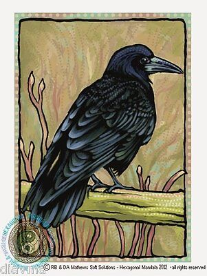 © ART - Raven Crow Rook Black Bird Wildlife Nature Original Artist Print by Di