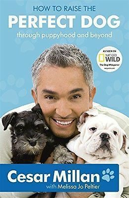 How to Raise the Perfect Dog by Cesar Millan Paperback Book  2010