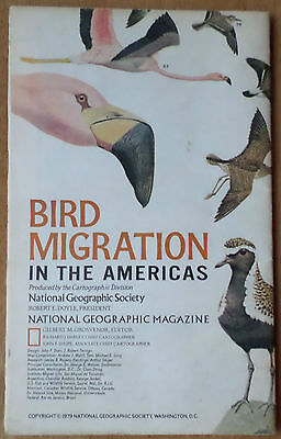 Vintage 1979 National Geographic Map - Poster Bird Migration in the Americas