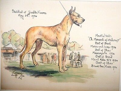 Framed Lillian Tiffany Original Watercolor of Great Dane Ch Monarch of Halecroft