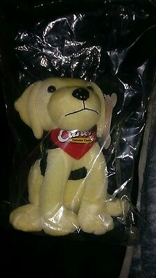 Raising Canes Limited Edition super short print Therapy Cane less than 10,000 $$
