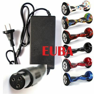 Caricatore Ventilato HOVERBOARD Smart Balance Wheel 42,2V  2A DC Power Charger