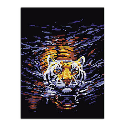 Tiger Oil Painting By Numbers Acrylic Drawing On Canvas DIY Home Office Decor