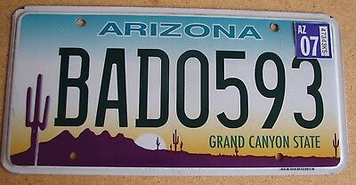 "Arizona Cactus Graphic  Passenger  License Plate "" Bad 0593 "" 3 Letter Word"