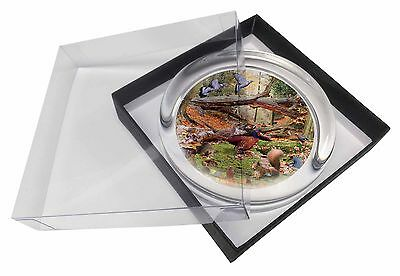 Woodland Forest Wildlife Animals Glass Paperweight in Gift Box Christma, AB-50PW