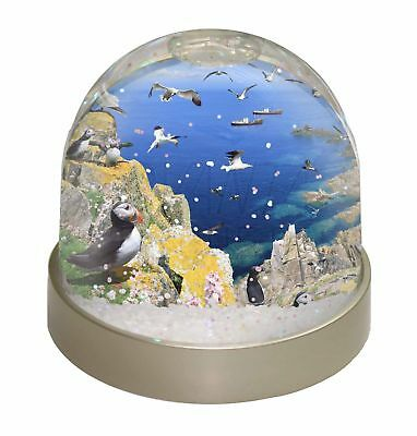 Puffins and Sea Bird Montage Photo Snow Globe Waterball Stocking Filler, AB-93GL