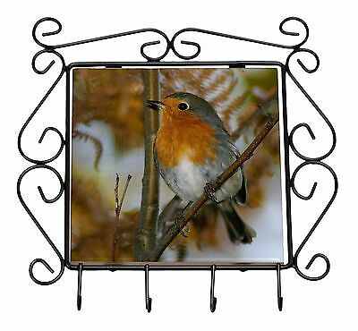 Autumn Robin Red Breast Wrought Iron Key Holder Hooks Christmas Gift, AB-R21KH