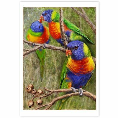 © ART - NEW Rainbow Lorrikeet Parrot Australian Bird Original artist print by Di