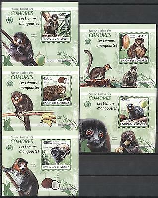 (232225) Monkey, Lemurs, Comoros