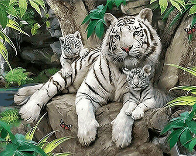 Paint By Number Kit On Canvas White Tiger DIY Painting PZ7046